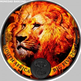 2019 - LEON - ONZA - AFRICA -  PLATA - COLOR