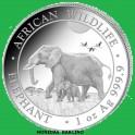 2022 -ELEFANTE - 100 SHILLINGS - SOMALIA -ONZA